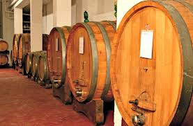 La via del vino e dell´olio, le cantine, le sagre e la cucina toscana
