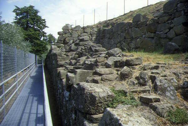 Musei: siti etruschi e romani