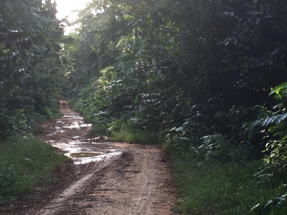 vacanza avventura nell'isola di principe nelle isole del cacao Sao Tomè e principe in africa